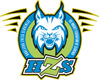Ice Hockey Federation of Slovenia